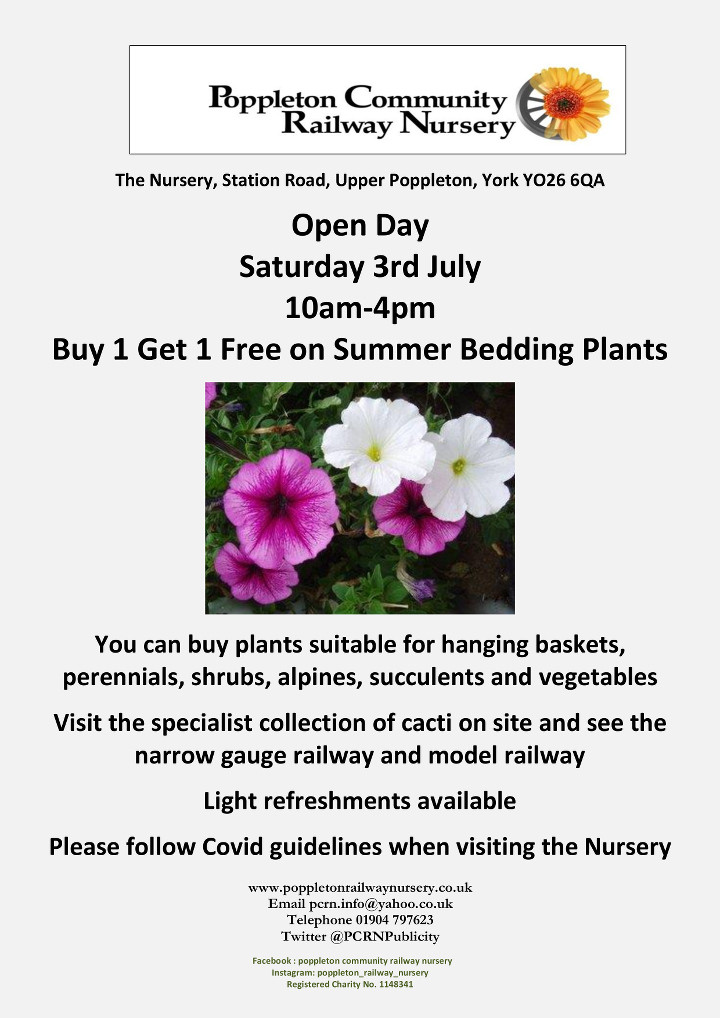 Buy One Get One Free on Bedding Plant Sales Day 2021